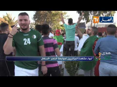 فرحة هستيرية لأنصار المنتخب الجزائري بهدف بلايلي