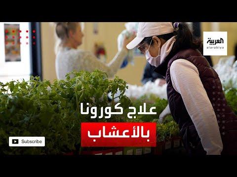 شاهد الصحة العالمية تجرب الأعشاب لعلاج كورونا