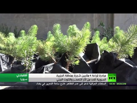 شاهد مبادرة لزراعة 4 ملايين شجرة في منطقة الجزيرة السورية
